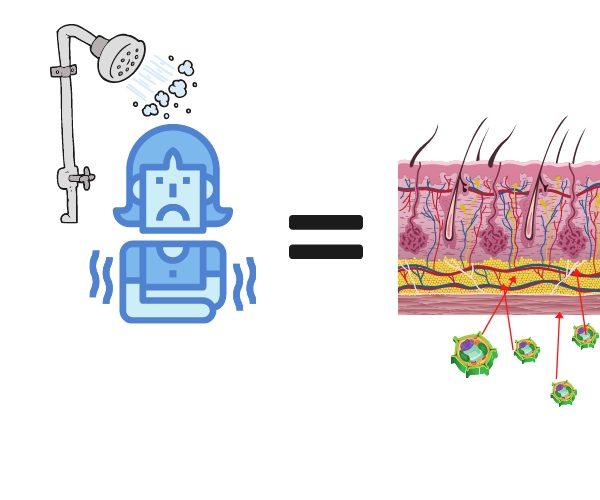 Wie du in 10 Schritten deine Mitochondrien stärkst 1