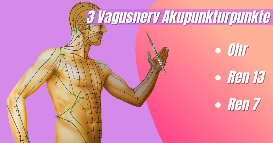 3 Vagusnerv Akupressurpunkte zur Harmonisierung des Nervensystems 1