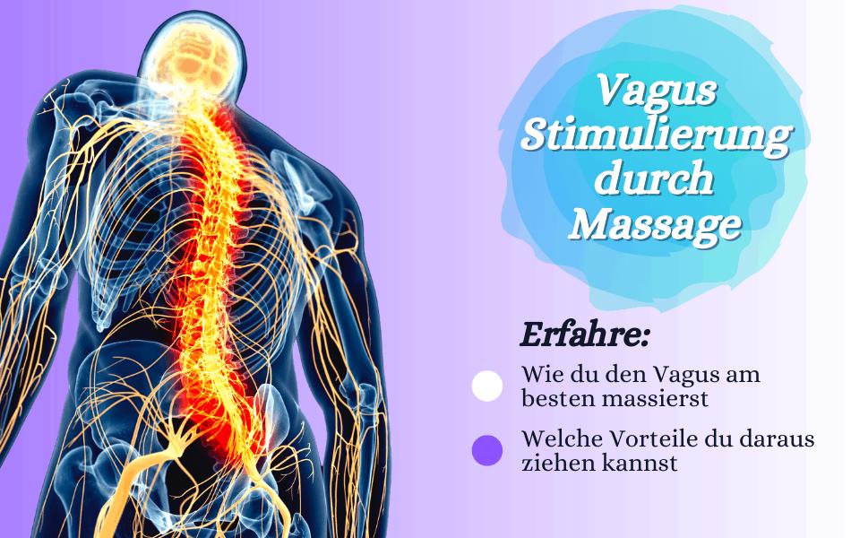 Vagusnerv Massieren: So stimulieren Sie Ihren Vagusnerv richtig 1