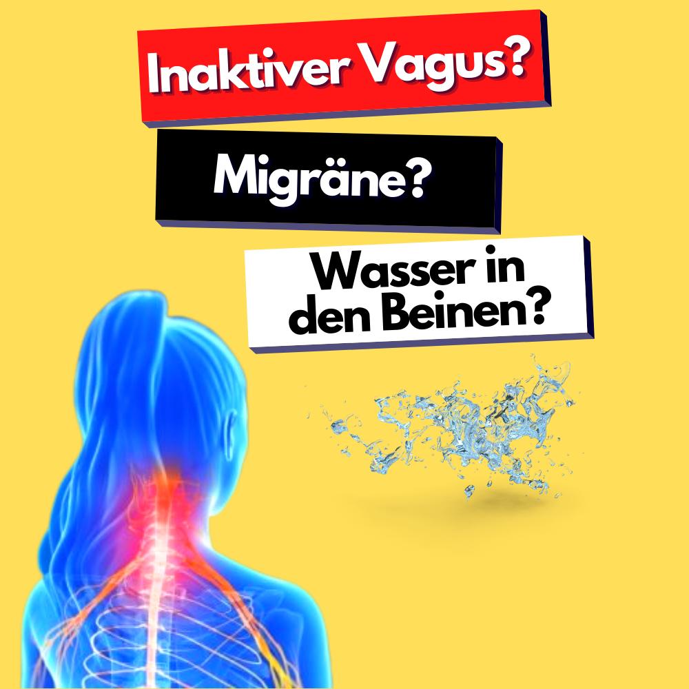 Vagus Nerv: Wie Du ihn Stimulierst und Selbstheilungskräfte aktivierst 1